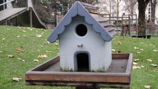 Bauordnung kleingarten wien