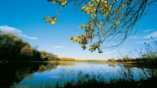 Lobau Wiens Beitrag Zum Nationalpark