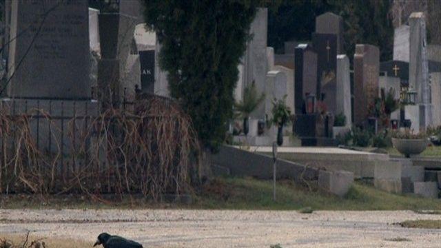 A schene Leich - Ehrengräber am Zentralfriedhof