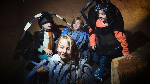 Zoom Kindermuseum - Erde. Erde