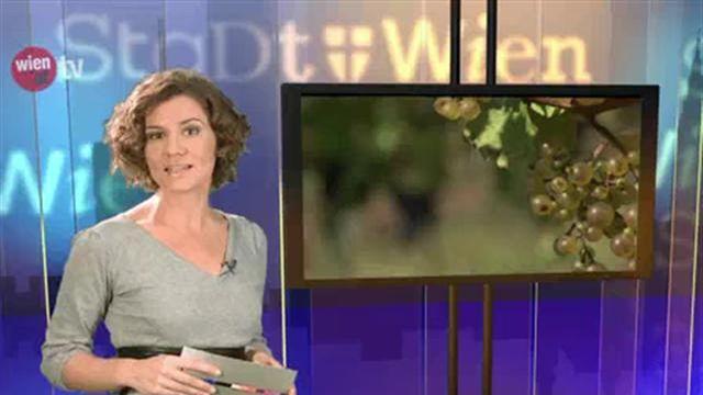 wien.at-TV - Aktuelle Sendung vom 9. November 2012