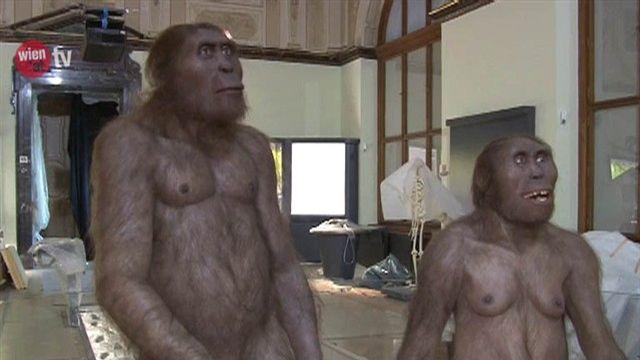Neandertaler im Museum