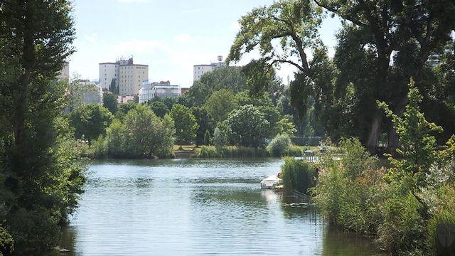 Naturbadeplätze in Wien