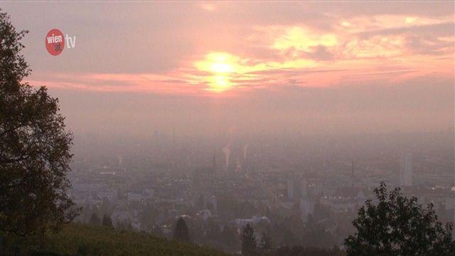 40 Jahre Umweltschutz in Wien