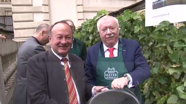 Bürgermeister Michael Häupl bei der Weinlese