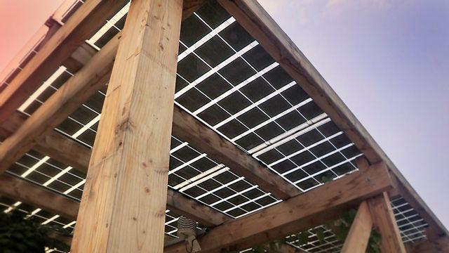Nachhaltigkeit über den Dächern Wiens