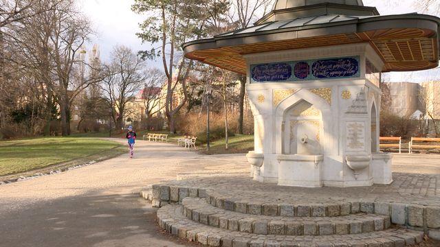 Laufen in Wien: Türkenschanzpark