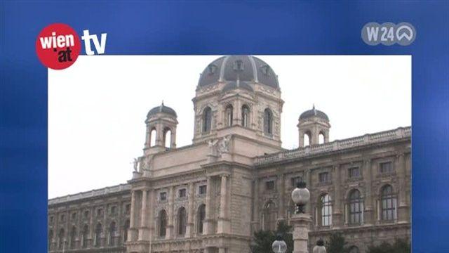 """""""Wien Kulturgut"""" - der Steffl unter der Lupe"""